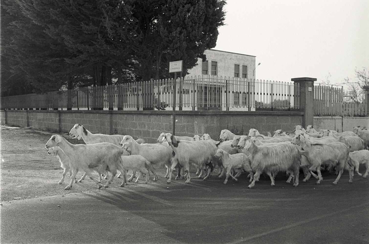 1988_Italy_23v